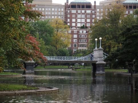 Boston Public Gardens (7)